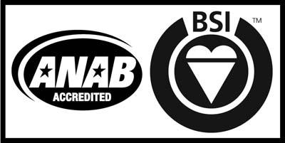 BSI-ANAB_BLK_ORN ok